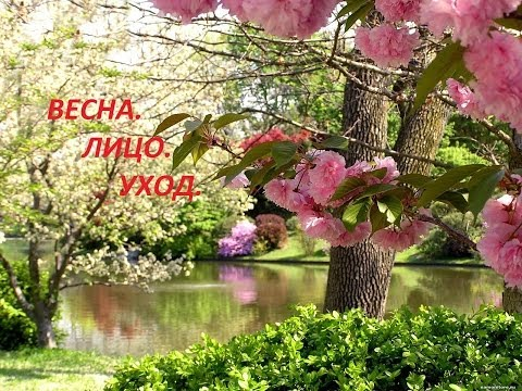 медицинский центр ЂЁкспрессћедсервисї