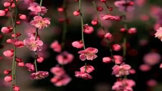 JOAN MANUEL SERRAT-De vez en cuando la vida