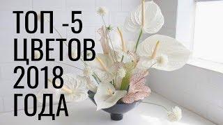 ТОП 5 цветов 2018 года // флористика