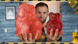 How Big Does a Freeze Dried 1 lb. Gummy Bear Get?