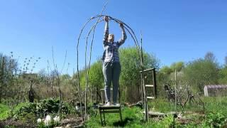 садовая АРКА своими руками / Garden arch from willow twigs(, 2016-05-27T19:43:48.000Z)