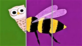 """Play """"Animal Match Up"""" Baby Learn Flying Animal Names 