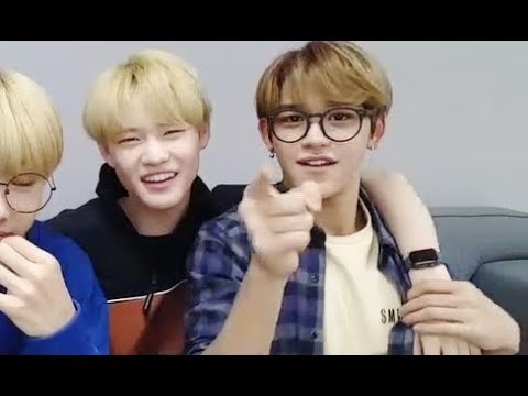 Chenle Imitating Lucas Compilation
