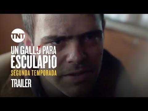 Trailer | Un Gallo Para Esculapio - Segunda Temporada temporada 2 de un gallo para esculapio