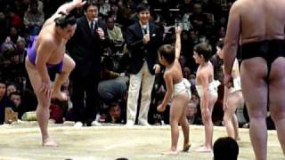 2009年2月8日(日)、日本大相撲トーナメント第33回大会の模様です。 大関...