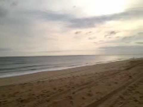 Outer banks beach surf fishing report great for Surf fishing outer banks