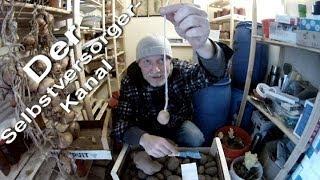 Kartoffeln lagern und vorkeimen