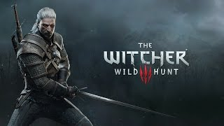 Tschart Epic fight - The Witcher 3 PC Gameplay Ultra Graphics