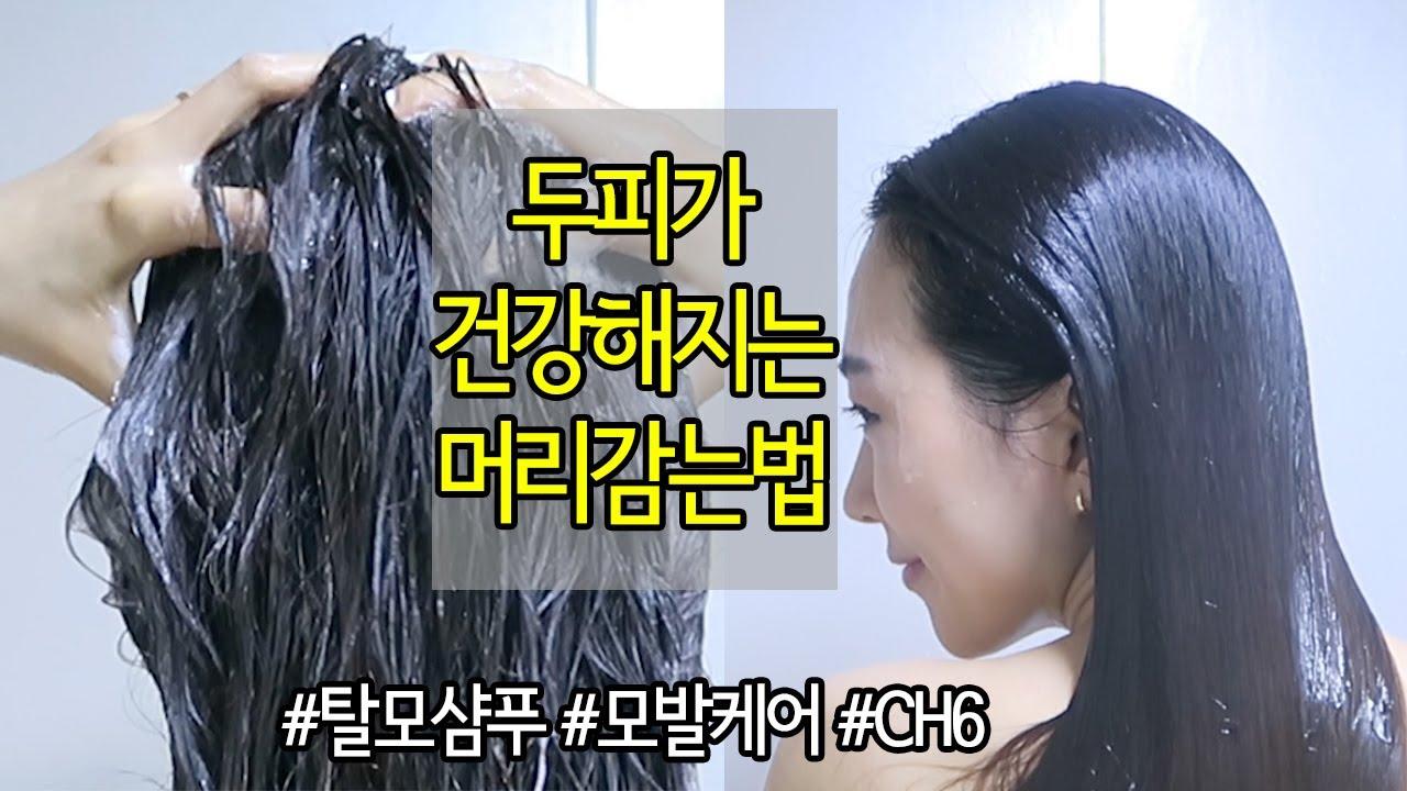 두피가 건강해지는 머리감는법💙 #탈모샴푸 #두피관리 (feat. CH6 스칼프 싹샴푸)