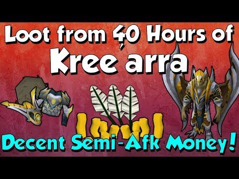 Loot from 40 hours of Kree'arra [Runescape 3] Easy Money & XP!