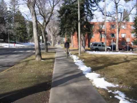 Stop Culture - A Day in the Life of a Freshman at Montana State University