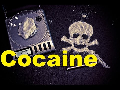 Facts about Cocaine | Your Brain on COCAINE | 2017 | TheCoolFactShow Ep.7