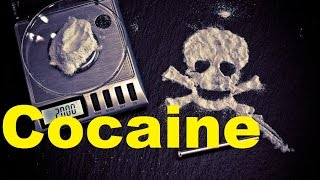 Cool Facts about Cocain. Your Brain on COCAINE.  TheCoolFactShow Ep.7