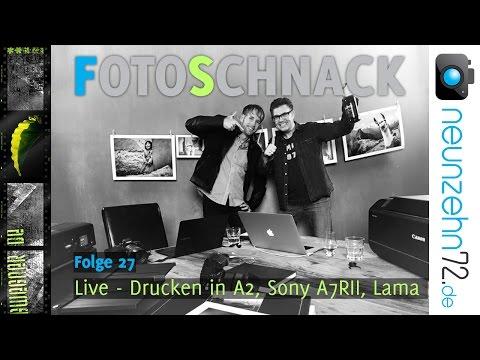Fotoschnack 27 - Drucken in A2, Sony A7 RII, Lama
