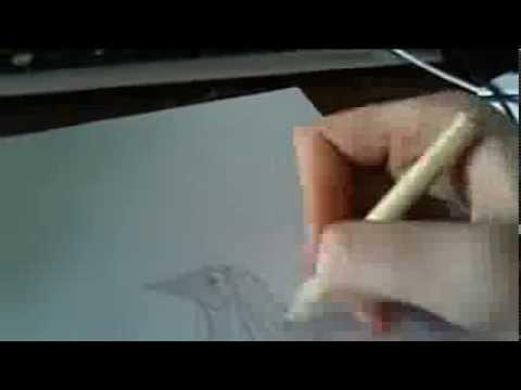 Как нарисовать выхухоль