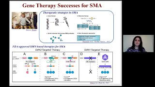 Approved gene-based therapies for neuromuscular diseases