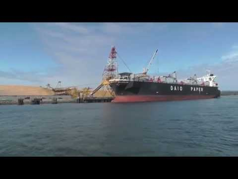 Daio Excelsior - bulk wood chip cargo ship