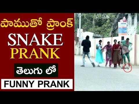 Epic Snake Prank In Telugu | Warangal Pranks 2019 | Zakas Zing Zing