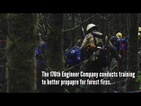 176th Engineers Conduct Wildfire Training
