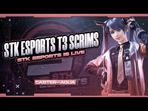 STK T3 SCRIMS