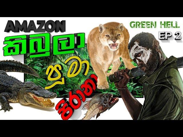 GREEN HELL EP2     කිබුලා පිරානා පූමා එක්ක සටන!