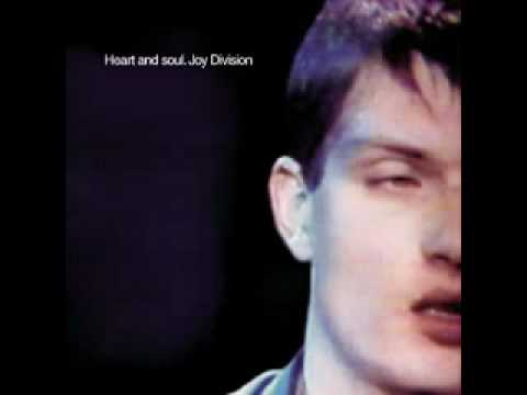 joy division ice age genetic records session
