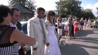 Свадебный клип Таганрог. Герам и Лусине.