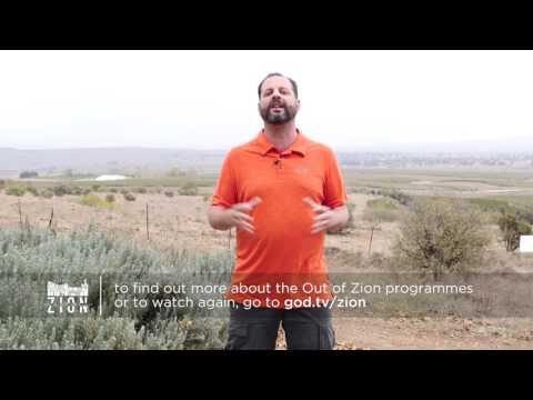 Out of Zion - Eli Cohen