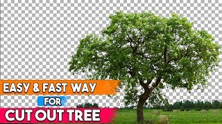 How to Cut Out a Tree in Photoshop Easy and Fast Way Special Techniques |  Part -2