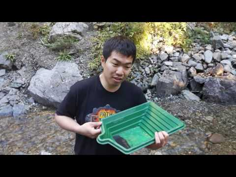 Yeeeeehaw! Look at those gold nuggets! A Nugget Valley Gold Prospecting Adventure