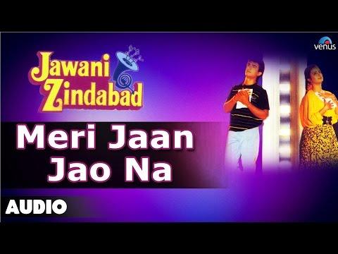Jawani Zindabad : Meri Jaan Jao Na Full Audio Song   Aamir Khan, Farah Khan  