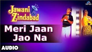 Jawani Zindabad : Meri Jaan Jao Na Full Audio Song | Aamir Khan, Farah Khan |