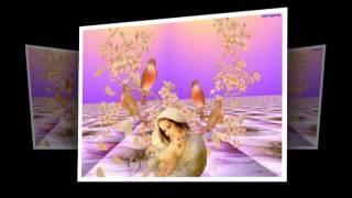 Mùa hoa ngát hương - Hoàng Quân