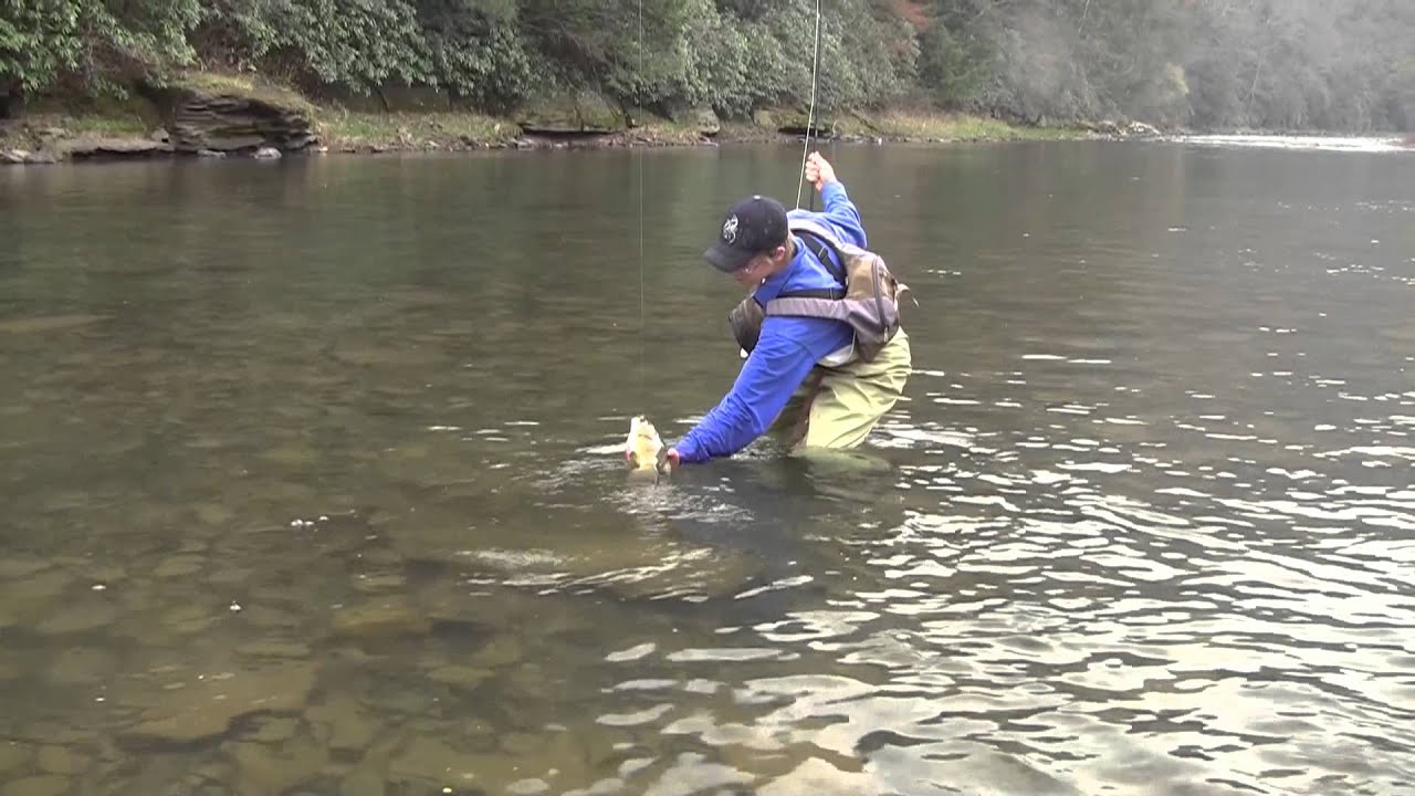 Dry fly fishing in pa youtube for Fly fishing pa
