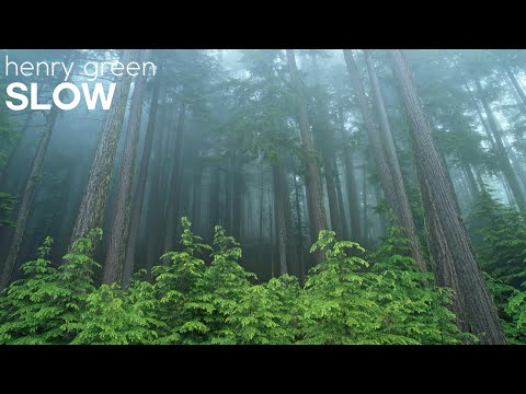 "Henry Green | ""Slow"""