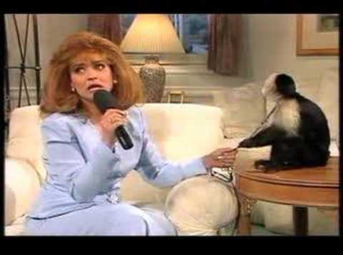 jan hooks simpsons
