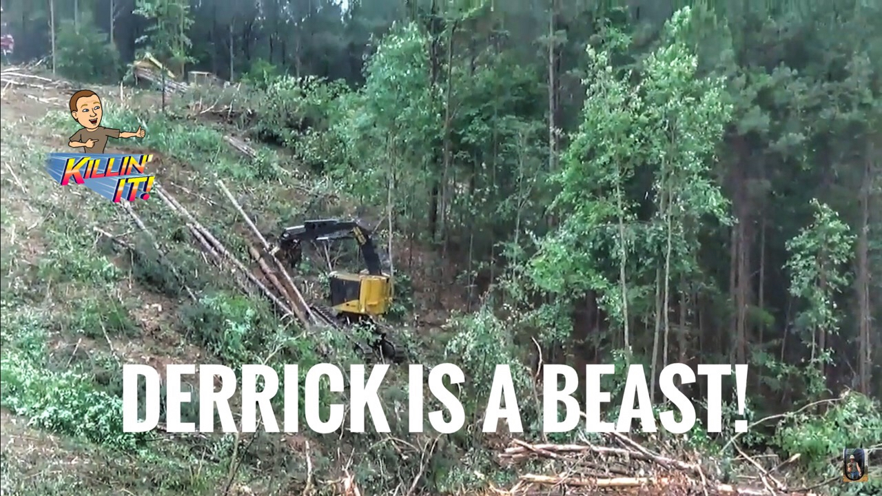 Tree Cutter Tigercat Tree Cutter Cutting Trees In Extremely Steep Ground