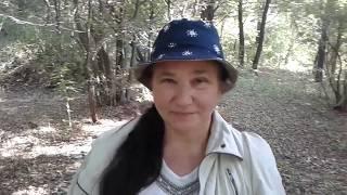 Содержание коз: Лесные прогулки и ответы на вопросы. Часть 9 .
