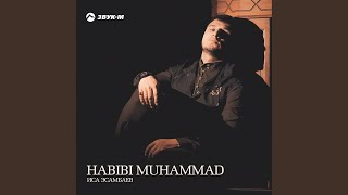 Habibi Muhammad (Nasheed)