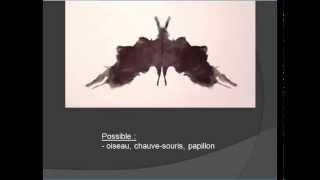 Test de Rorschach,  taches d'encre (français)