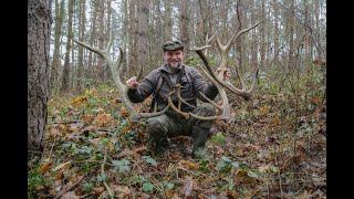 Zrzuty jeleni NIESAMOWITE PETARDY przed końcem roku 2019