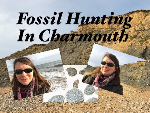 Ophelia Talks About Fossil Hunting In Charmouth