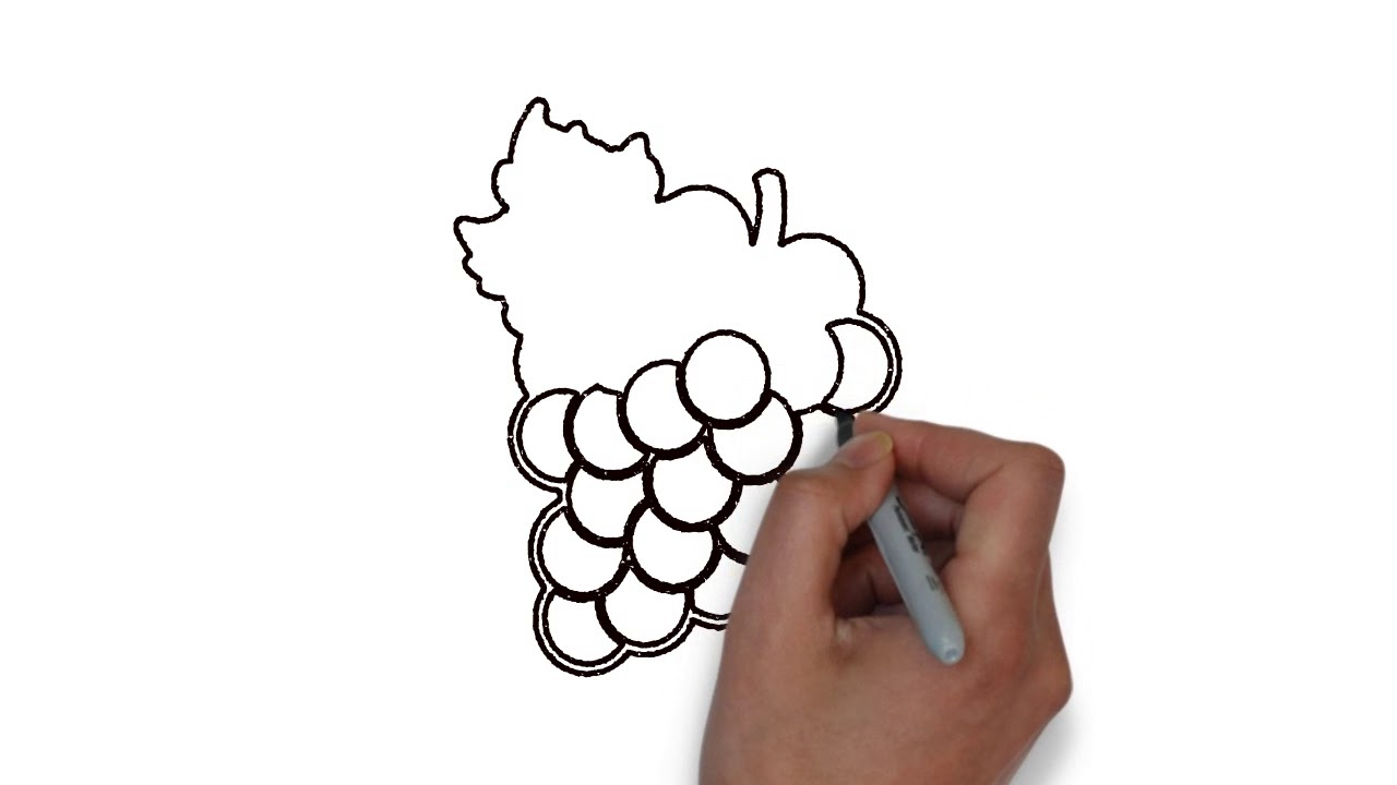 How to draw | Fruit | Grape | step by step (very easy)