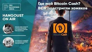18+ Где мой Bitcoin Cash? BCH подстригли хомяков.