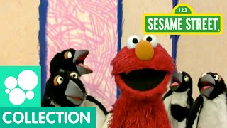 Sesame Street: All About Penguins thumbnail