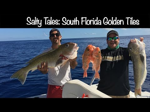 South Florida Fishing For Golden Tiles - Deep Sea Fishing In Florida - Fort Lauderdale