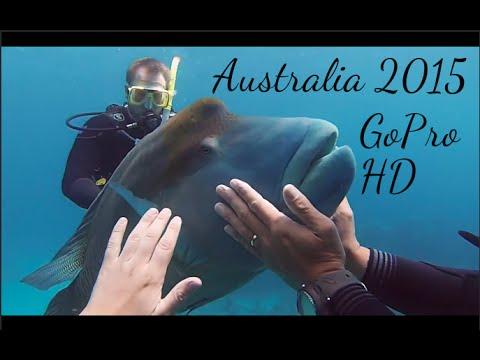 GoPro Hero 3+ | Australia East Coast Road Trip 2015