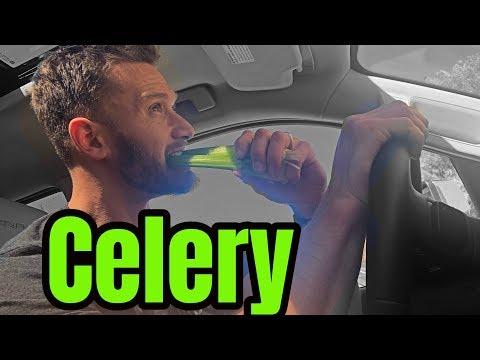 Celery Juice Everyday?! Legit or Total Joke?