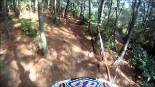 Downhill em taquara
