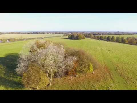 First Drone Flight - Beverley Westwood